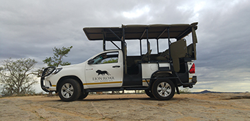 Private Safari Vehicle Hire - Lion Roar Safaris - Kruger
