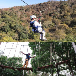 Zipline and Treetop Challenge | Lion Roar Safaris
