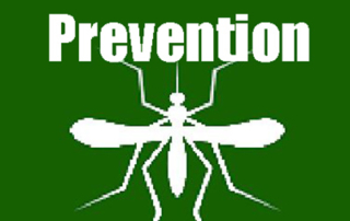Information about Malaria, Kruger National Park safaris, Kruger, Kruger Park tours, Kruger safaris, Kruger trips, Malaria, Malaria medication, is Kruger National Park a Malaria area, Kruger and malaria, malaria in Kruger National Park, about Malaria, malaria pills, anti-malaria medication, what medication the take for malaria, malaria prevention, mosquitos and malaria